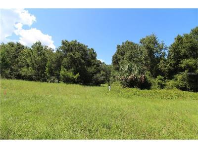 Lake County, Seminole County, Volusia County Residential Lots & Land For Sale: E 46 State Rd