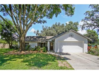Mount Dora Single Family Home For Sale: 4125 Dora Wood Drive