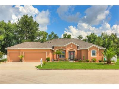 Deland Single Family Home For Sale: 816 Deer Fern Avenue