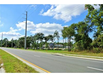 Volusia County Residential Lots & Land For Sale: 3690 Sandlor Drive