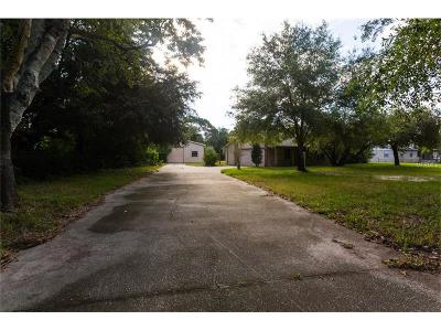 Orlando Single Family Home For Sale: 1305 Murdock Boulevard