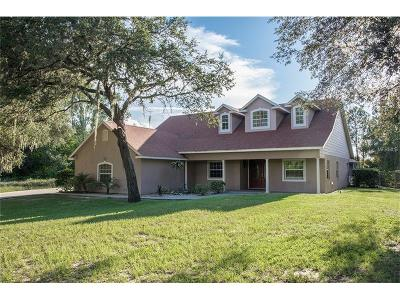Clermont Single Family Home For Sale: 6625 Ona Court