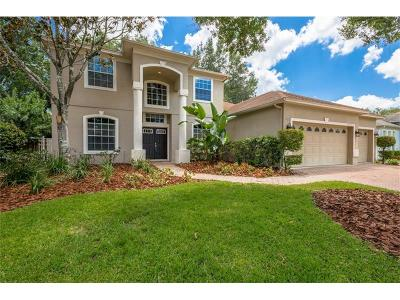 Orlando Single Family Home For Sale: 4123 Lillian Hall Lane