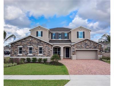 Ocoee Single Family Home For Sale: 922 Blackthorn Drive