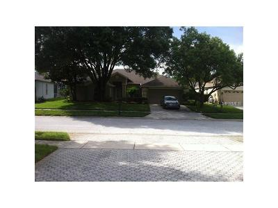Palm Harbor Single Family Home For Sale: 3749 Pendlebury Drive