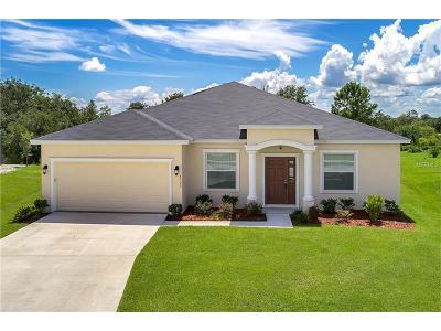 Saint Cloud Single Family Home For Sale: 3703 Ricky Lane
