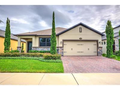 Saint Cloud Single Family Home For Sale: 5132 Appenine Loop W