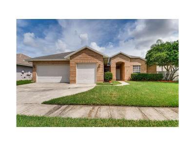 Orlando Single Family Home For Sale: 4062 Kiawa Drive