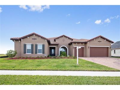 Kissimmee Single Family Home For Sale: 4384 Summer Breeze Way