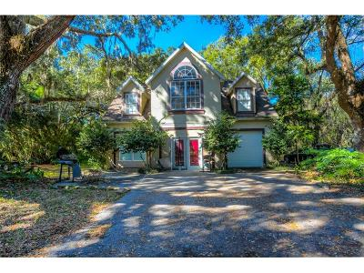 Orlando Single Family Home For Sale: 14140 Boggy Creek Road