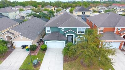Kissimmee Single Family Home For Sale: 900 Seasons Boulevard