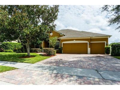 Winter Garden Single Family Home For Sale: 807 Shadowmoss Drive