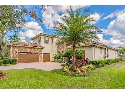Sorrento Single Family Home For Sale: 32222 Red Tail Boulevard
