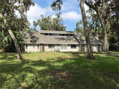 Ormond Beach Single Family Home For Sale: 3951 Tano Drive