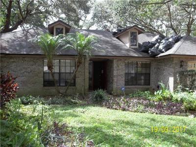 Apopka Single Family Home For Sale: 2334 Ashington Park Drive