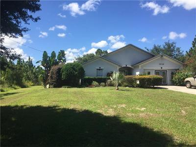 Orlando Single Family Home For Sale: 19326 Ralston Street