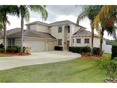 Mount Dora Single Family Home For Sale: 5382 Rishley Run Way