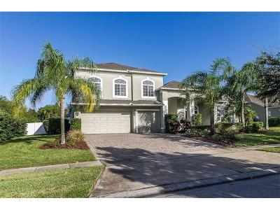 Mount Dora Single Family Home For Sale: 6001 Tremayne Drive
