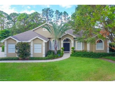 Orlando Single Family Home For Sale: 5704 Craindale Drive