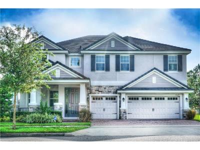 Windermere Single Family Home For Sale: 7629 Carlow Court