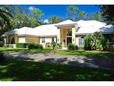 Longwood Single Family Home For Sale: 2020 Springs Landing Boulevard