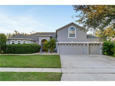 Apopka Single Family Home For Sale: 3518 Kilmarnock Drive