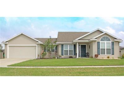 Tavares Single Family Home For Sale: 520 Tortola Avenue