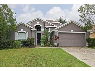 Apopka Single Family Home For Sale: 219 Chestnut Creek Drive