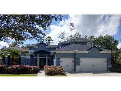 Sanford FL Single Family Home For Sale: $525,000