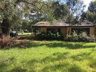 Winter Park Single Family Home For Sale: 1320 N Lakemont Avenue