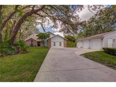 Winter Garden Single Family Home For Sale: 1524 Windermere Road