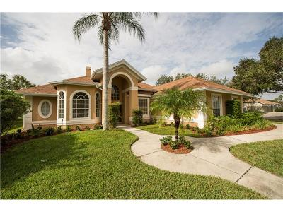 Orlando Single Family Home For Sale: 3718 Spear Point Drive
