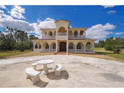Winter Garden Single Family Home For Sale: 17618 Seidner Road