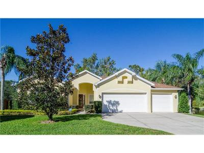 Winter Springs Single Family Home For Sale: 200 Blue Creek Drive