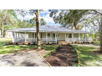 Deland Single Family Home For Sale: 1645 Carr Street