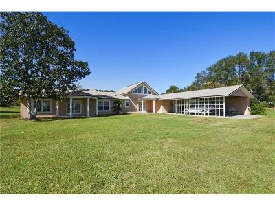 Apopka Single Family Home For Sale: 4353 McDonald Gley Road