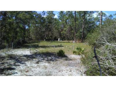 Orange City Residential Lots & Land For Sale: Alice Drive