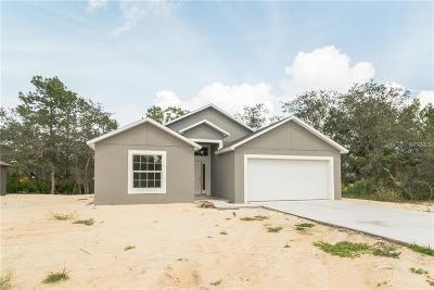 Kissimmee Single Family Home For Sale: 348 Gardenia Court