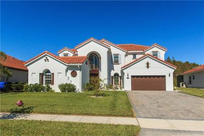 Kissimmee Single Family Home For Sale: 2881 Swoop Circle
