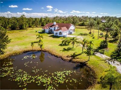 Orlando Single Family Home For Sale: 20416 Ortega Street