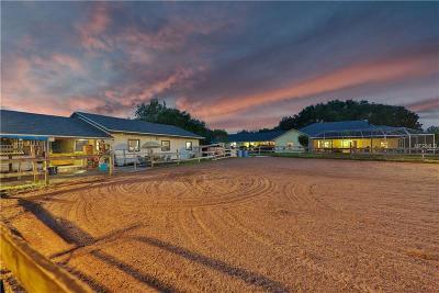 Chuluota Single Family Home For Sale: 824 Vista Cove