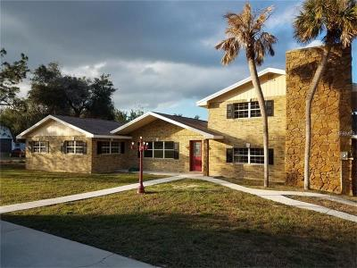 Leesburg Single Family Home For Sale: 2520 El Rancho Drive