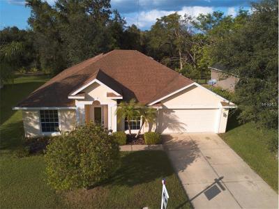 Debary Single Family Home For Sale: 133 Hammock Oak Circle