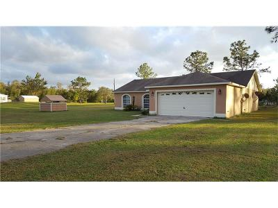 Polk City Single Family Home For Sale: 221 L A Combee Drive