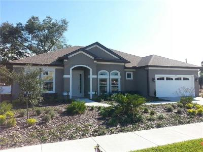 Winter Park Single Family Home For Sale: 1319 Fountain Hills Court