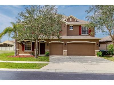 Orlando Single Family Home For Sale: 606 Crownclover Avenue