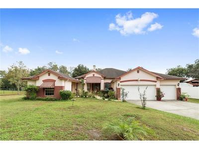 Orlando Single Family Home For Sale: 4057 S Chickasaw Trail