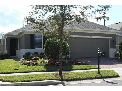 Deland Single Family Home For Sale: 713 Preakness Circle