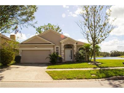Orlando Single Family Home For Sale: 12440 Castlemain Trail