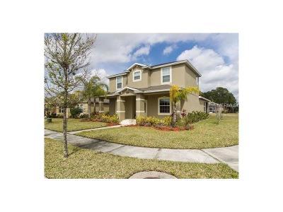 New Smyrna Beach Single Family Home For Sale: 3321 Marsili Avenue